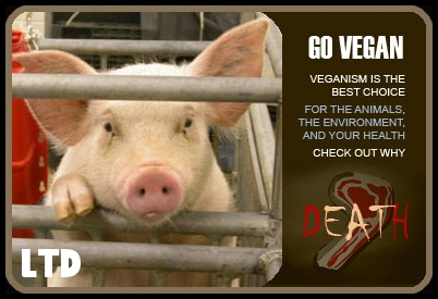 cadeau d/'anniversaire Vegan T-shirt Cruauté gratuite animaux droits veganism freeganism