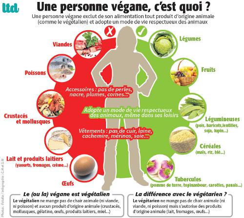 """Résultat de recherche d'images pour """"veganisme"""""""