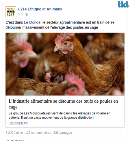 Le secteur agroalimentaire se détourne-t-il vraiment massivement de l'élevage des poules en cage?