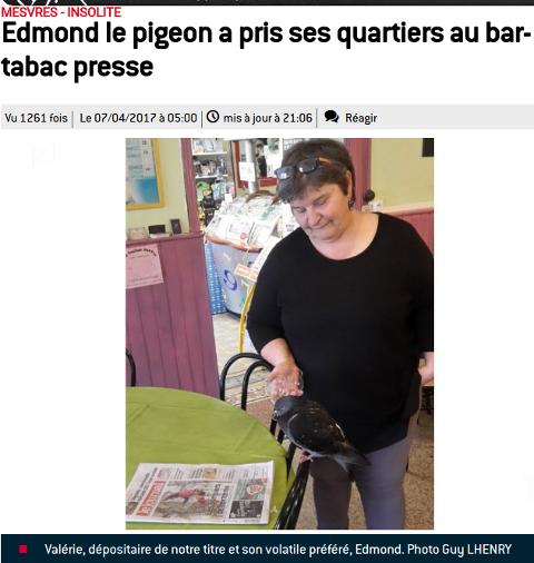 Le bon accueil fait au pigeon Edmond