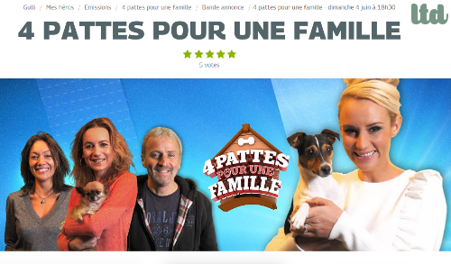 """""""4 pattes pour une famille"""" sur Gulli"""