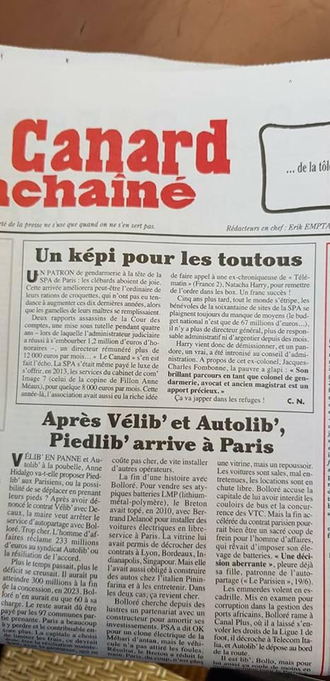 Bientôt un haut responsable de la gendarmerie à la tête de la SPA (de Paris)?