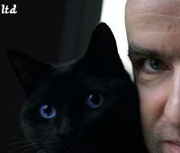 Mais remarquez d\u0027ailleurs bien les yeux du chat (totalement) noir  ils  sont bleus.