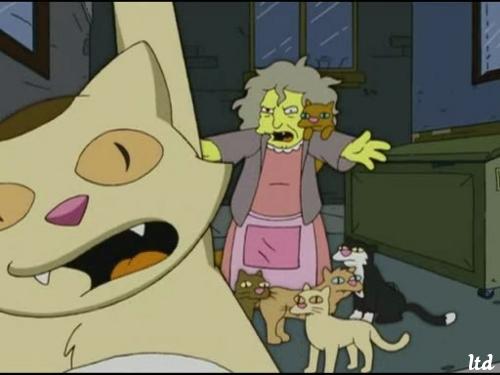 La vieille femme aux chats, ou aux pigeons, mérite tout le réconfort et la  dignité que la société doit lui accordée, car elle assume une compassion à