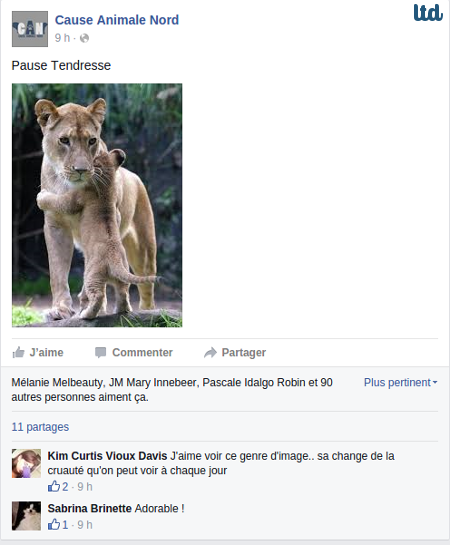 Cause Animale Nord