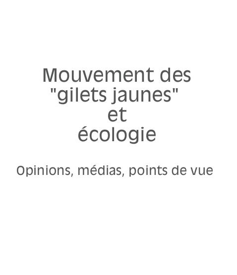 Mouvement des « gilets jaunes » et écologie PDF