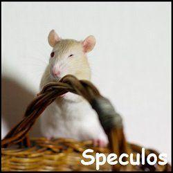 Le fantasme morbide et meurtrier de l'invasion de Paris par les rats