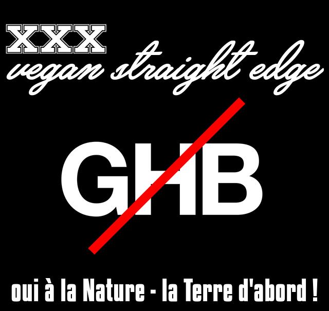 La diffusion du GHB/GHL : des décadents aux branchés