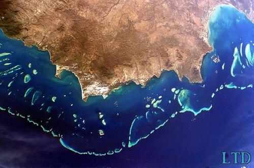 L'effondrement de la barrière de corail