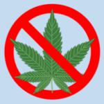 """""""Cannabis thérapeutique : «Allons plus vite, madame la ministre !»"""""""